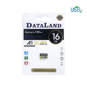 کارت حافظه دیتالند 16GB