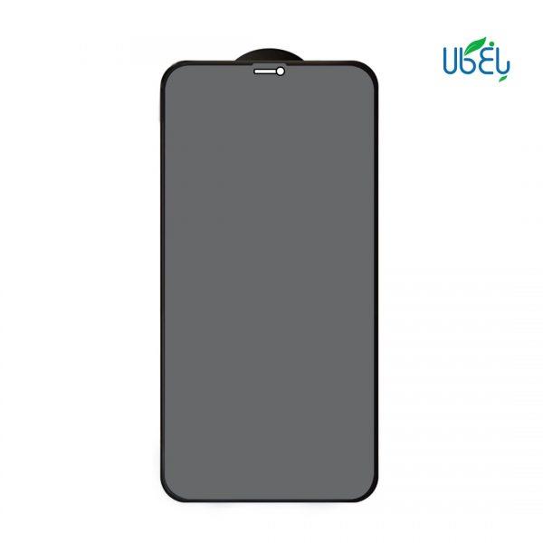 محافظ صفحه نمایش Privacy مناسب گوشی iphone 12 promax